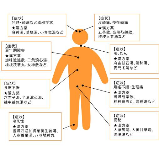 具体的な症状によって適切な漢方薬を処方いたします。