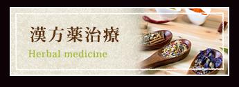 漢方薬治療 Herbal medicine