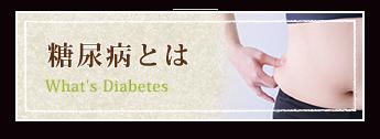 糖尿病とは What's Diabetes